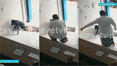 A Clínica Vet Vip de Juazeiro do Norte (Ceará), se solidarizou e prestou socorro a um cachorro de rua.