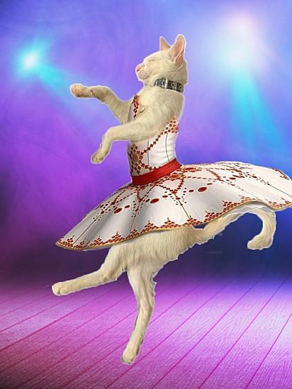 No soy bailarina, soy bailarina de tango.