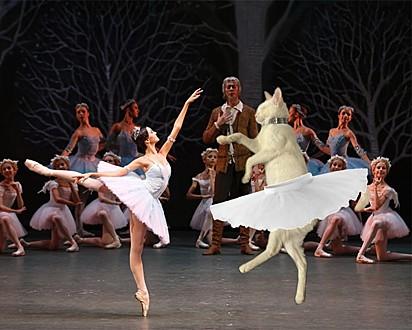Se eu realmente fosse inteligente, colocaria uma piada com referência à alguma peça de Ballet famosa, mas não sou.