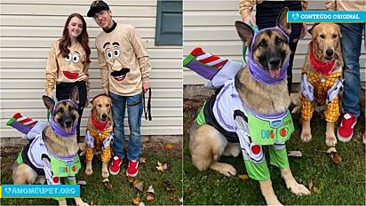 Em comemoração ao Halloween do ano passado um casal decidiu fantasiar a si e os pets com personagens do filme Toy Story.
