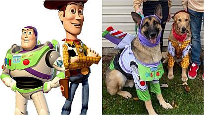 Os desenhos animados Buzz Lightyear e Woody (à esquerda) e os cães fantasiados com os personagens (à direita).