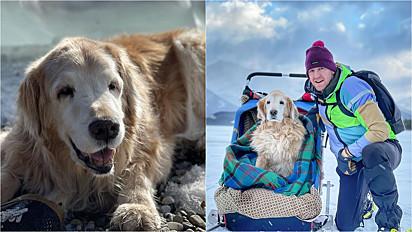 Donny Marchuk, consultor de educação física e maratonista, e seu cachorro Sully.