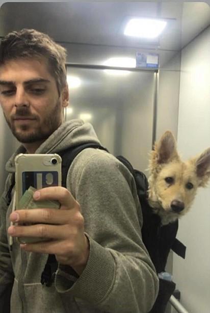 Thomas Tebet criou uma página no Facebook em que compartilha fotos do cão e pede ajuda aos internautas para encontrá-lo.