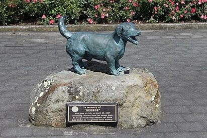 O cachorrinho recebeu uma estátua em homenagem a sua coragem.