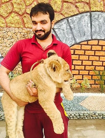 Zulkaif Chaudhary segura o leão Babar quando ainda era filhote.