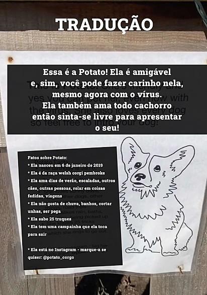 O papel colocado para incentivar as pessoas a brincar com Potato, traduzido para facilitar a leitura.