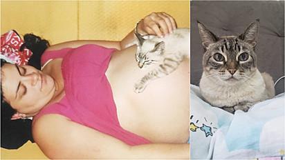 Denise com a gatinha Lelé, que foi adotada quando estava grávida do seu primeiro filho (à esquerda) e Lelé atualmente (à direita).