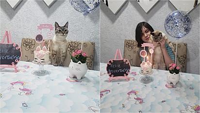 A gatinha Lelé ganhou até festa de aniversário para comemorar o seu 15º ano de vida e o filho de Denise (à direita) a segura.