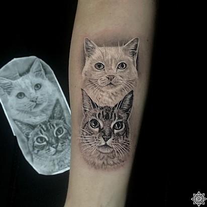 Tatuagem dos gatinhos Branco e Lelé, agora eternizados na pele da dona, Denise Chiquetti.