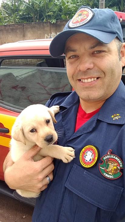 O filhote Bob com o cabo Genivan Küll do 13º Batalhão de Bombeiros Militar de Santa Catarina.