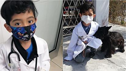 Criança de sete anos planeja cursar medicina veterinária e cria pet shop para pagar curso no futuro.