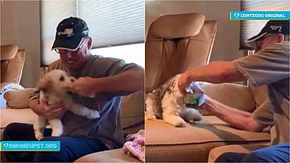 Cão fica indignado pelo fato do pai do seu tutor fechar o pacote de petiscos e entra em guerra na tentativa de recuperar o embrulho.