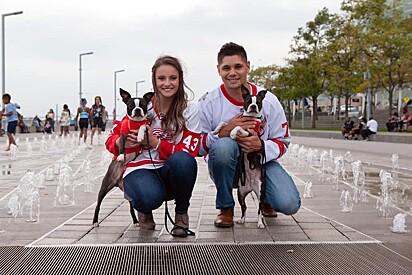 Kayla e Kevin com seus amados cães.