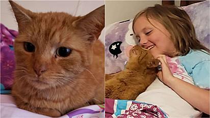 Criança surpreende a mãe com um gatinho escondido em seu quarto.