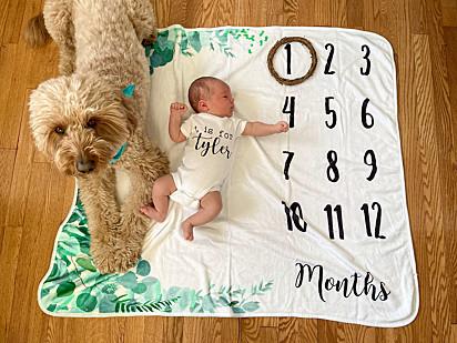 Como um irmão presente que é, o cão Bentley fez questão de participar da sessão de fotos do bebê.
