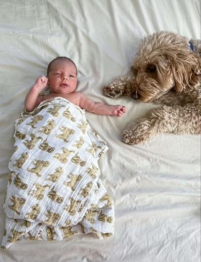 Bentley e o bebê.
