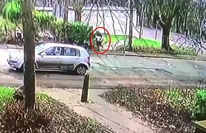 Imagens de câmera de segurança mostram o ladrão fugindo com o cão no colo.
