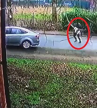 Com o cão no colo, o ladrão embarcou em um Ford Mondeo prateado e fugiu.