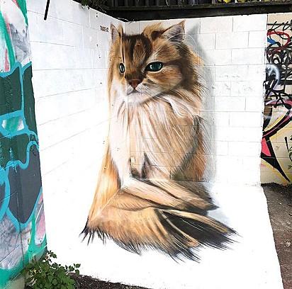 Grafite feito para homenagear a gatinha em Auckland, Nova Zelândia.