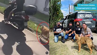 Cão em situação de maus-tratos é resgatado pelo delegado Matheus Laiola, o investigador Cassio Silva e a ONG Força Animal em Curitiba, Paraná.