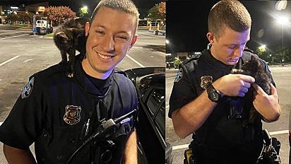 Após ser chamado para atender ocorrência, policial decide adotar gatinho vítima de maus-tratos e abandono.