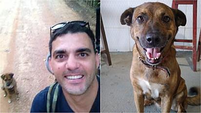 Homem encontra cachorro no lixo, adota e ambos percorrem 2.000 km de Santa Catarina a Espirito Santo.