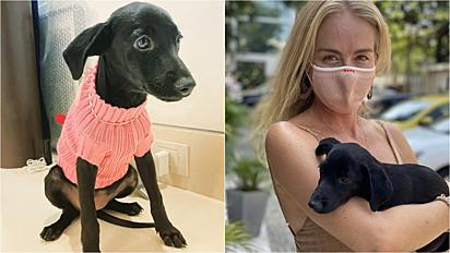 Angelica realizou a sua primeira adoção, uma cachorrinha que estava sob os cuidados do Projeto Gramacho.
