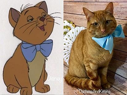 O filhote foi nomeado Toulouse em homenagem ao gatinho do filme.