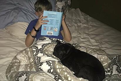 Dex adora dormir ao lado do seu irmão humano.
