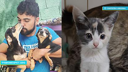 Marcelinho Protetor cuida de animais abandonados desde os 9 anos de idade.