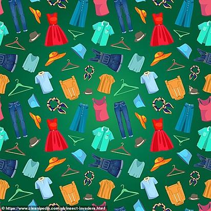 Desafio: encontrar a traça em meio as roupas.