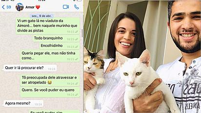 Casal resgata gato em avenida movimentada em Contagem, Minas Gerais.