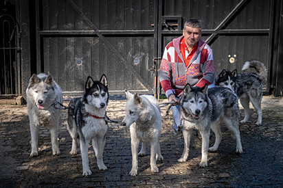 Andy com os seus cinco cães.