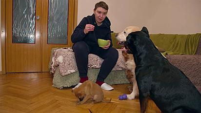 O cachorrinho com a sua nova família.