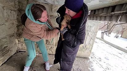 Voluntárias resgatam o filhote a temperaturas abaixo de -16º.