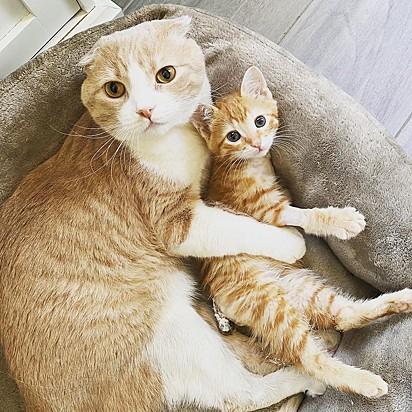 Fergus com o gatinho Salvador.