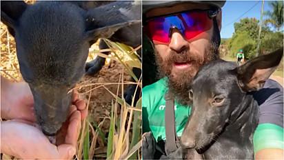 Ciclista adota cachorro abandonado em estrada na região de Capim Branco, Minas Gerais.