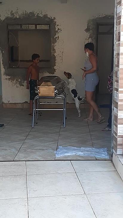 O cachorro demostrou toda a sua tristeza.