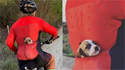 Ciclista resgata filhote de cachorro abandonado em estrada na cidade de Nordestina, Bahia.