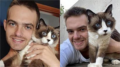 Gato tem ajudado jovem a tratar depressão.