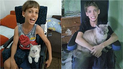 Criança especial cria uma linda amizade com gato em Arujá, São Paulo.