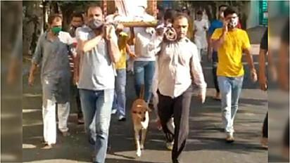Cadela acompanha por 5 km caixão do homem que a alimentava em Vesu, Surate, Índia.