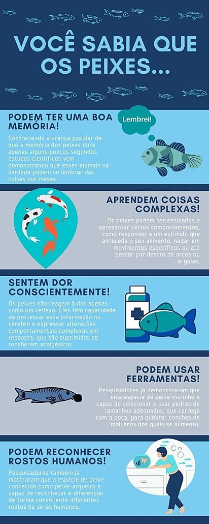 Algumas curiosidades sobre os peixes.