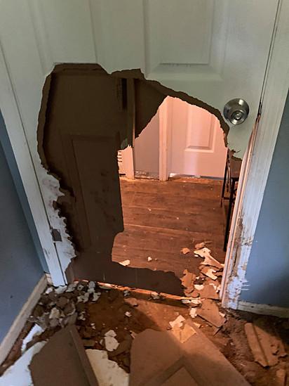 O pit bull conseguiu destruir a porta do quarto.
