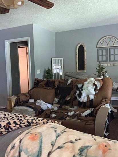 O sofá tinha apenas quatro meses de uso.