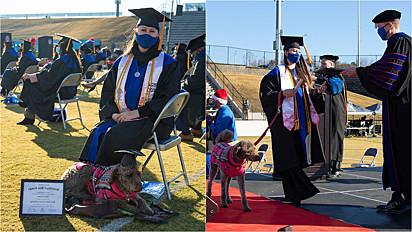 Cão de serviço se forma junto com a sua dona pela University of West Georgia em dezembro do ano passado.