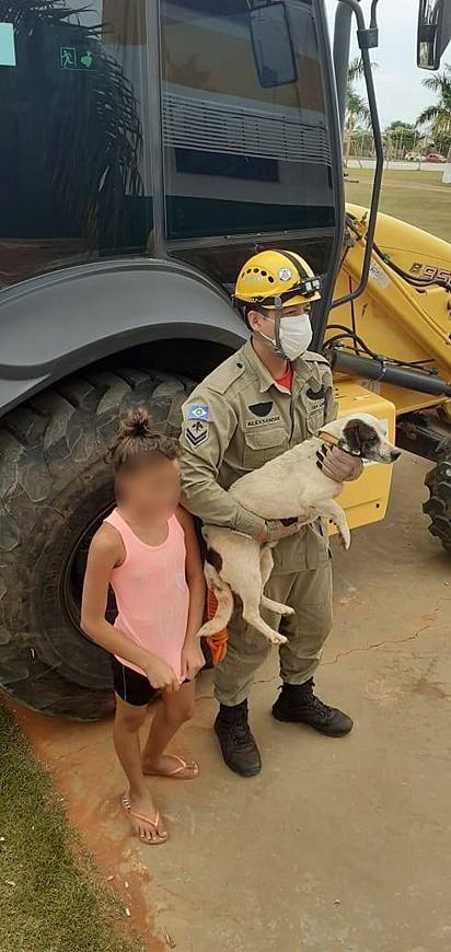 O cachorrinho foi resgatado são e salvo.