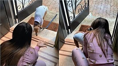 Anitta reencontra seu cachorro em Miami.