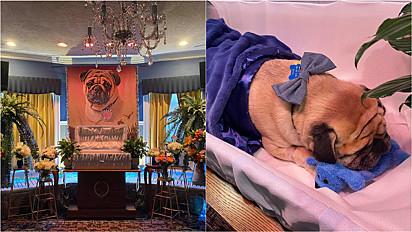 Pug recebe cerimônia fúnebre memorável em Allentown, Pensilvânia.