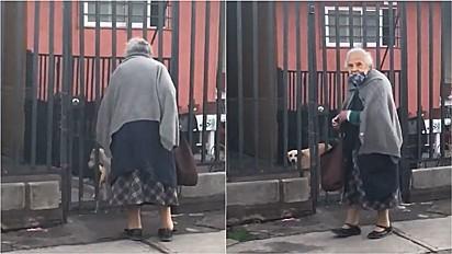 Idosa sai para comprar pão e partilha com cachorro que encontra na rua em Santiago, Chile.